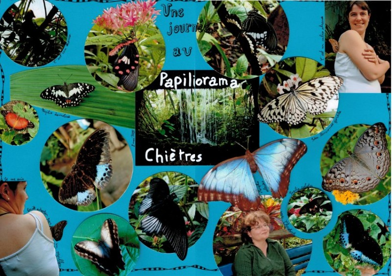 Papiliorama double page