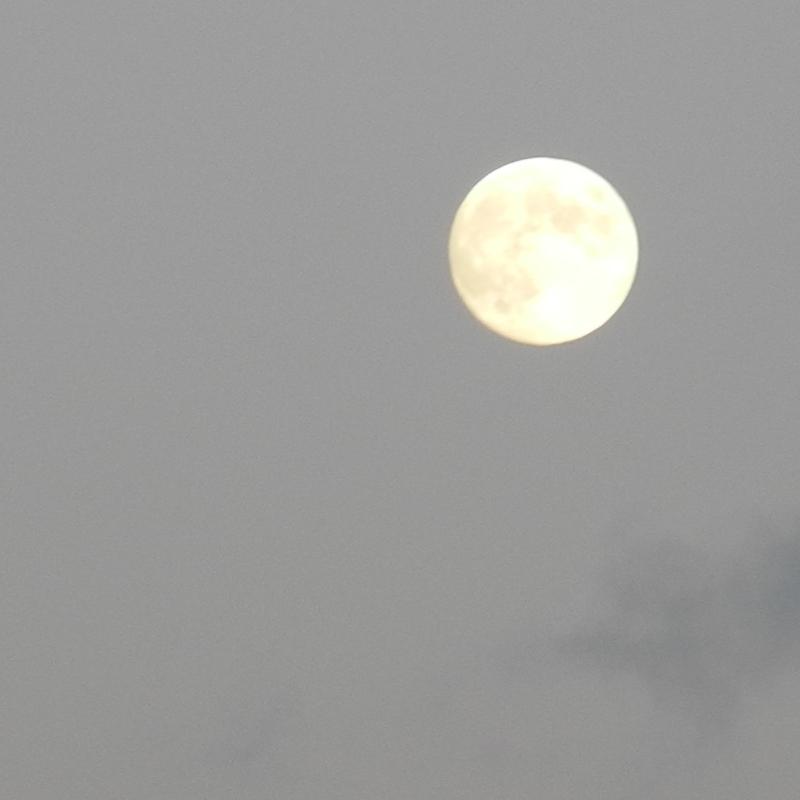 Rome Lune