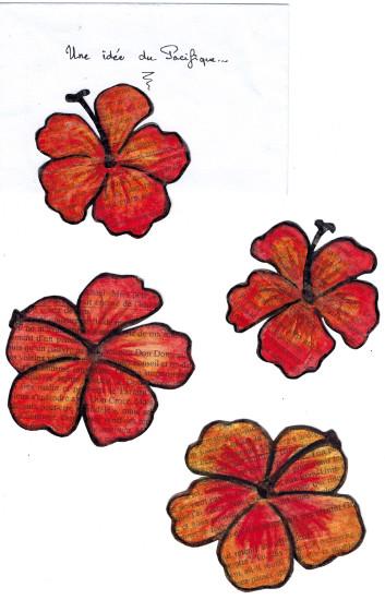 Hibiscus de Yo