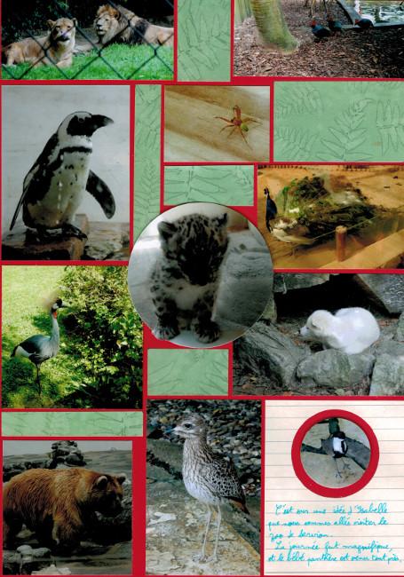 Bourgeon créatif Un jour au zoo collimage