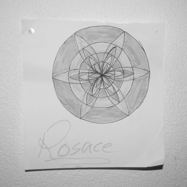 Symétrie-2-Bourgeon-créatif-Projet-photo-renouvelable-PPR-2014.jpg