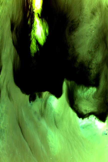 abstrait-Bourgeon-créatif-Projet-photo-renouvelable-PPR-2014.jpg