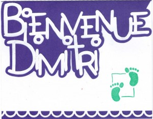 Bourgeon créatif carte naissance2
