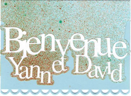 Bourgeon créatif carte naissance3