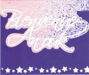 Bourgeon créatif carte naissance4