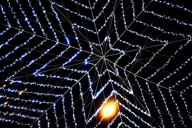 Illuminations_Rue-Saint-Laurent_Festival-Lausanne-lumières_Bourgeon-créatif