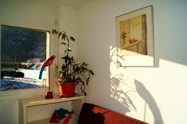 Bourgeon créatif semaine 6 par la fenêtre2