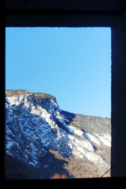 Bourgeon créatif semaine 6 par la fenêtre3